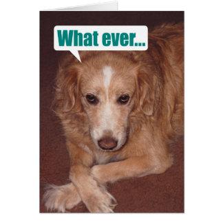 Mutt divertido con la tarjeta de cumpleaños de
