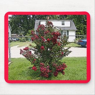 Myrtle rojo pintado Bush Alfombrilla De Ratón