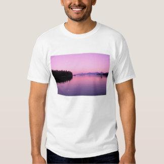 NA, los E.E.U.U., Alaska, Alaska suroriental, Camiseta