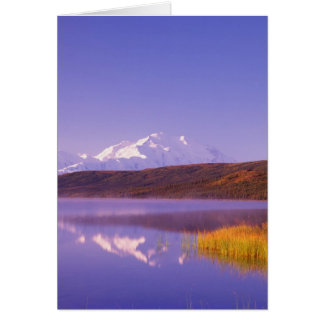 NA, los E.E.U.U., Alaska, Denali NP, lago wonder, Tarjeta