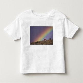 NA, los E.E.U.U., Oregon, Seneca, rancho de Camiseta De Bebé