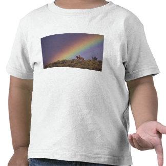 NA, los E.E.U.U., Oregon, Seneca, rancho de Ponder Camisetas