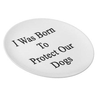 Nací proteger nuestros perros plato de cena