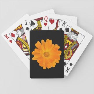 Naipes anaranjados vibrantes de la flor de la