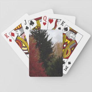 Naipes coloridos de la foto de los árboles del