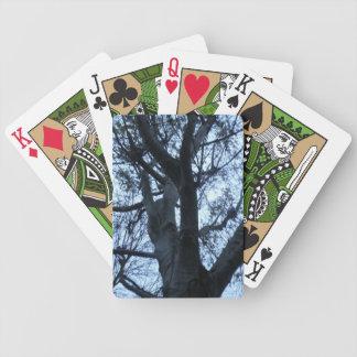 Naipes de la fotografía de la silueta del árbol