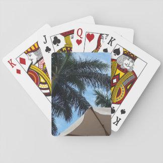 Naipes de la palmera de Tenerife