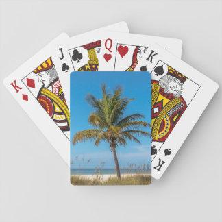 Naipes de la playa del palmtree de la Florida