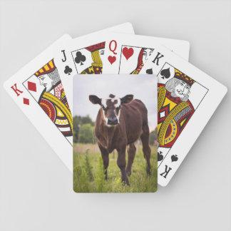 Naipes de la vaca