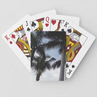 Naipes de las palmeras de Tenerife