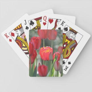 Naipes de los tulipanes de la primavera roja