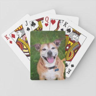 Naipes del perro