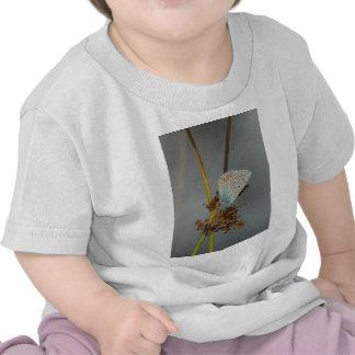 Naranja blanco azul con la mariposa de los puntos  camisetas