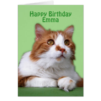 Naranja del feliz cumpleaños de Emma y gato del bl Tarjeton