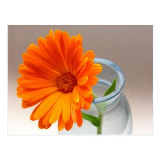 Naranja floral postal