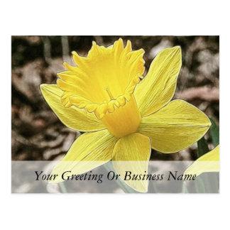Narciso amarillo de la primavera tarjetas postales