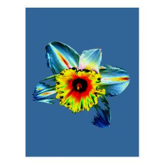 Narciso de neón colorido postal