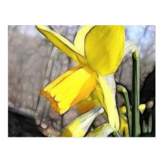 Narciso en los arbolados de la primavera postal