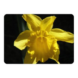Narciso perfecto invitación 12,7 x 17,8 cm