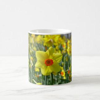 Narcisos amarillo-naranja 01.0.2 taza de café