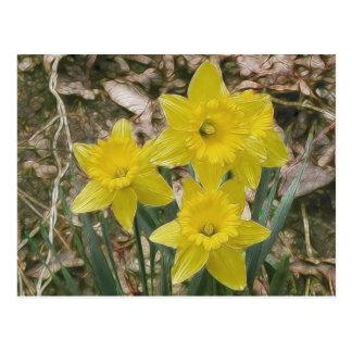 Narcisos amarillos felices tarjetas postales