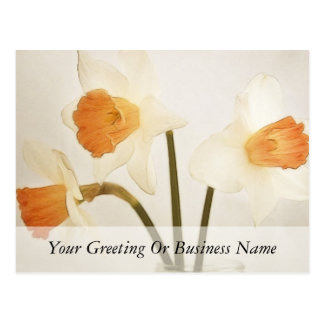 Narcisos antiguos tarjeta postal
