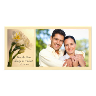 Narcisos blancos que casan reserva que la foto de tarjeta