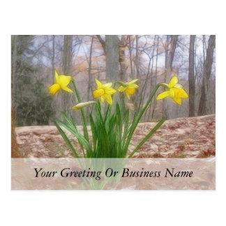 Narcisos del bosque en la primavera tarjetas postales