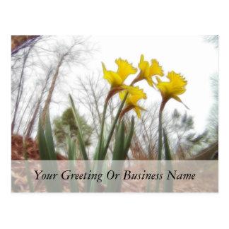 Narcisos del bosque postales