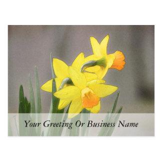 Narcisos preciosos de la primavera tarjeta postal