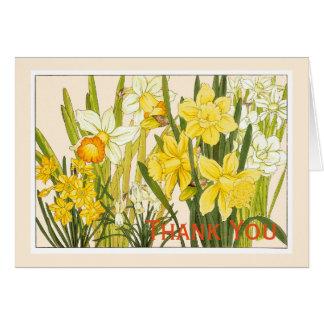 Narcisos, tarjeta de Botanicals - saludo del