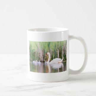 Natación blanca del cisne de la madre con los taza de café