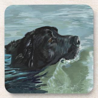 Natación de Labrador Posavasos
