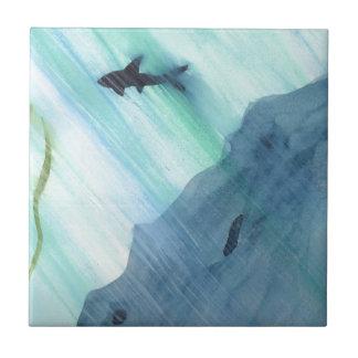 Natación del tiburón azulejo