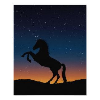 Naturaleza animal del caballo folleto 11,4 x 14,2 cm
