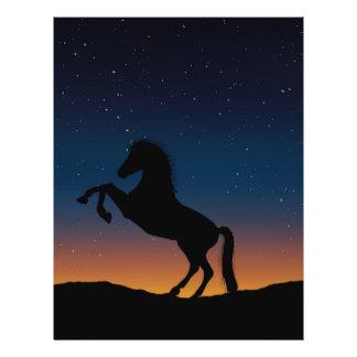 Naturaleza animal del caballo folleto 21,6 x 28 cm