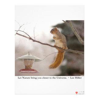 Naturaleza/coleccionables animales de las camiseta folleto 21,6 x 28 cm