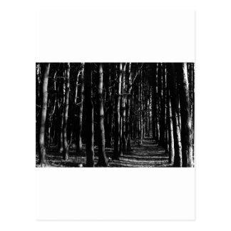 Naturaleza, rastro escrito postales
