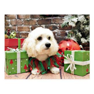 Navidad - Bichon Frise X - Bella Postal