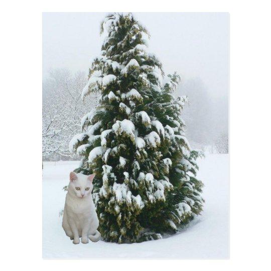 Navidad blanco postal