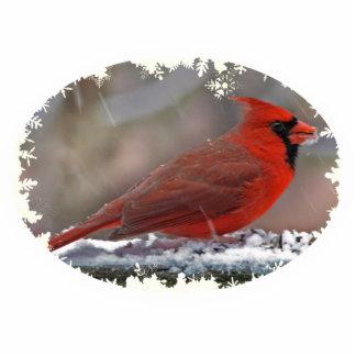 Navidad cardinal que cuelga el acrílico esculturas fotográficas
