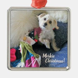 Navidad de Morkie que almacena el ornamento