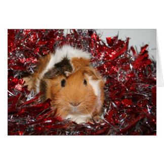 Navidad del conejillo de Indias Tarjeta De Felicitación