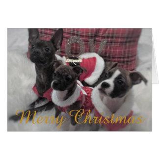 Navidad del perrito tarjeta de felicitación