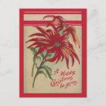 Navidad del vintage, Poinsettias rojos y saludos
