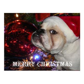 Navidad inglés del dogo postal