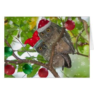 Navidad occidental juvenil de los búhos de tarjeta de felicitación