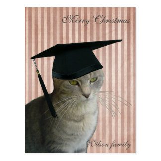 Navidad sabio divertido del gato postales
