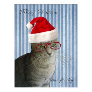 Navidad sabio divertido del gato tarjetas postales
