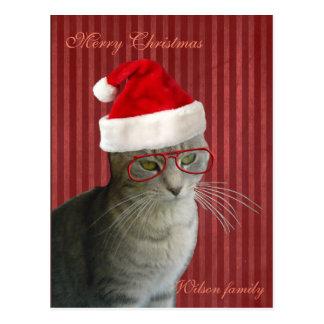 Navidad sabio divertido del gato tarjeta postal